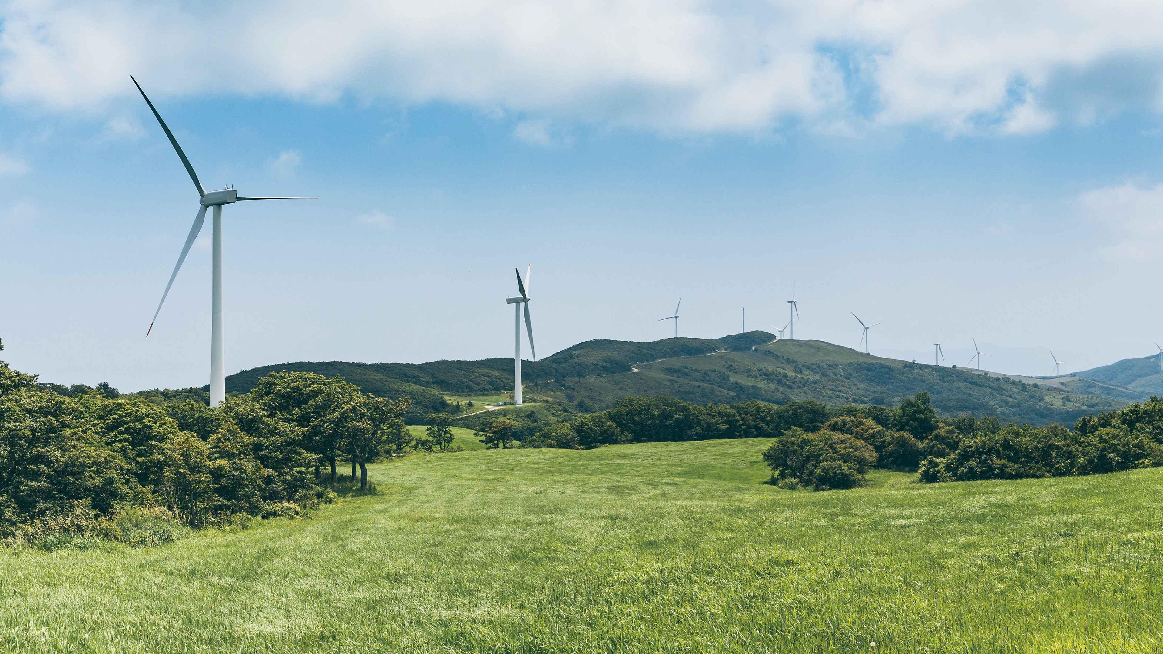 Siêu dự án điện gió Biển Cổ Thạch 4,4 tỷ USD: Bình Thuận chưa đồng ý cho HLP Invest nghiên cứu